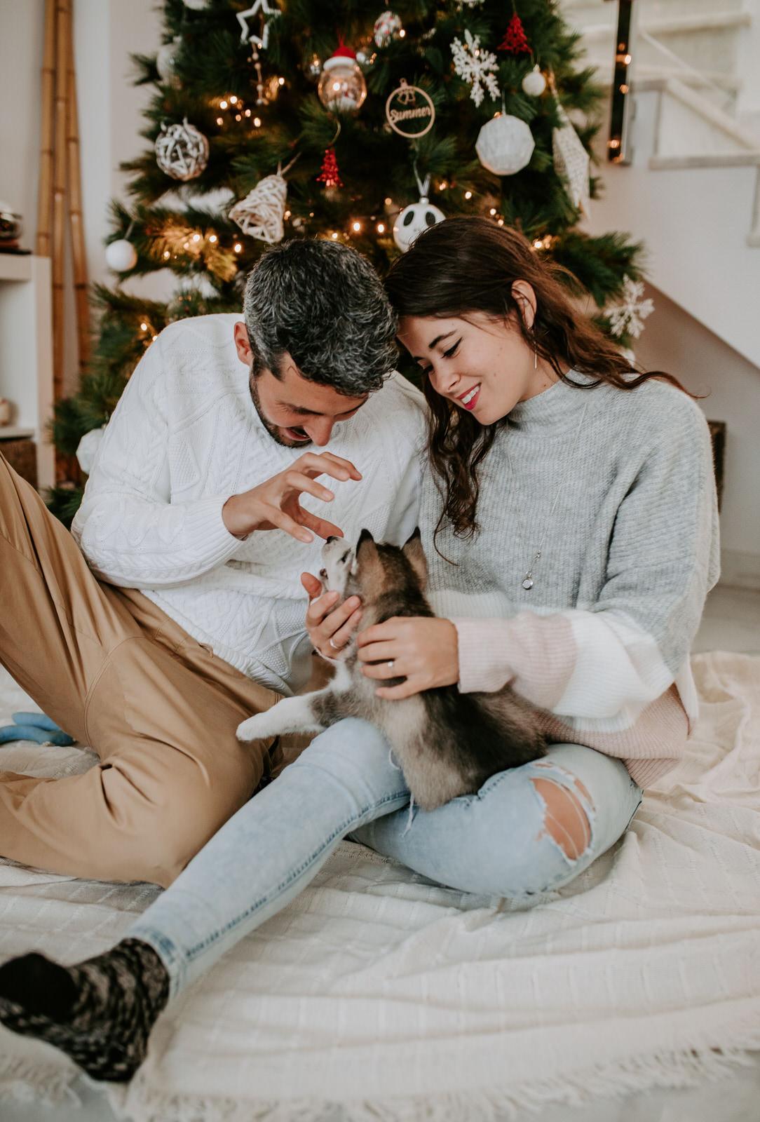 Puppy Christmas Love by  Jesús Martínez Photos