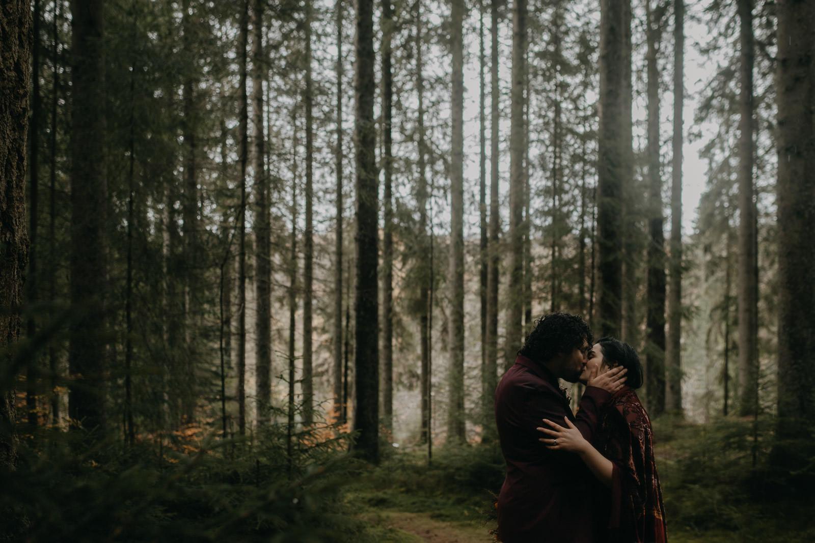 Below The Trees by Raini Rowell
